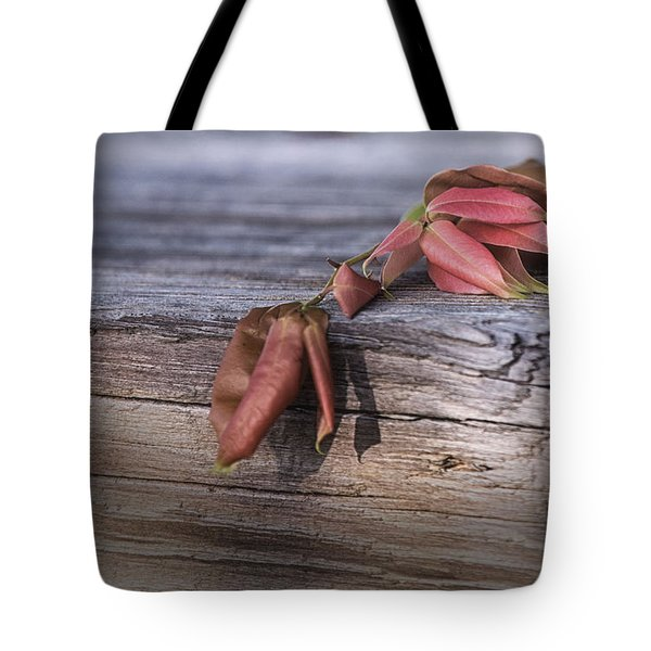 Tote Bag featuring the photograph Mindfulness In Nature by Mary Lou Chmura