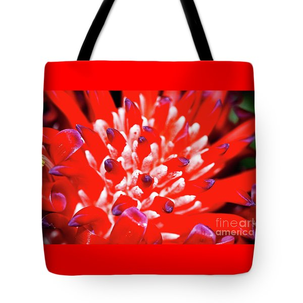Tote Bag featuring the photograph Flaming Torch Bromeliad By Kaye Menner by Kaye Menner