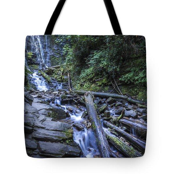 Mingo Falls One Tote Bag