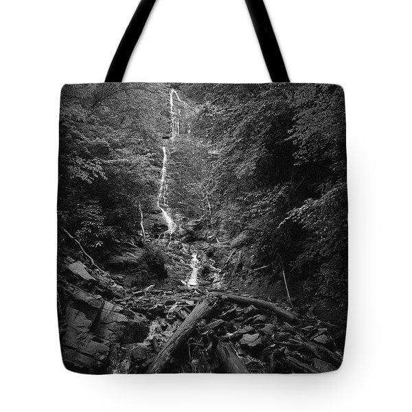 Mingo Falls Tote Bag