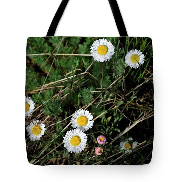 Mini Daisies Tote Bag