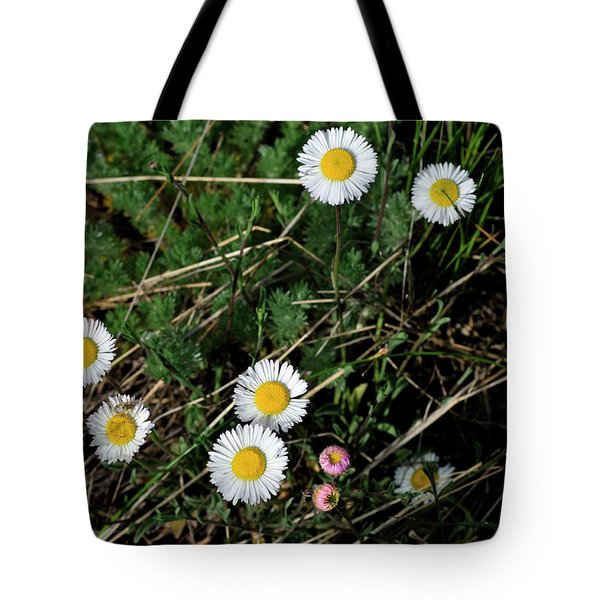 Tote Bag featuring the photograph Mini Daisies by Ron Cline