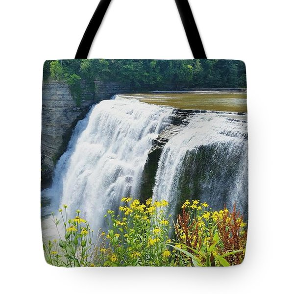 Tote Bag featuring the photograph Mini Falls by Raymond Earley