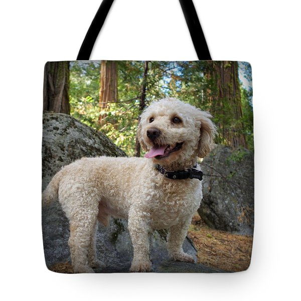 Mini Poodle Tote Bag