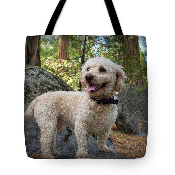 Mini Poodle Tote Bag