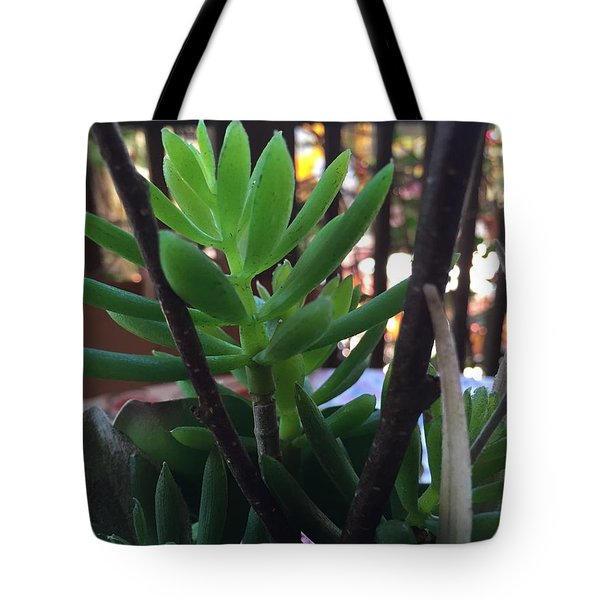 Mini Succulent  Tote Bag by Russell Keating