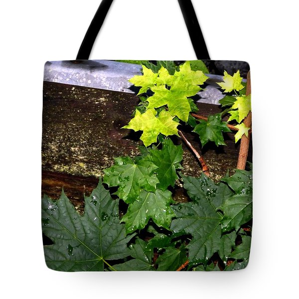 Miniature Maple Leaves Tote Bag