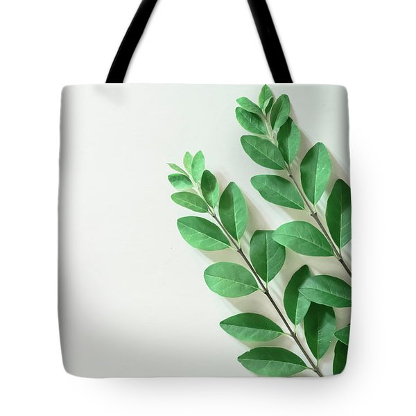 Tote Bag featuring the photograph Minimal Green by Andrea Anderegg