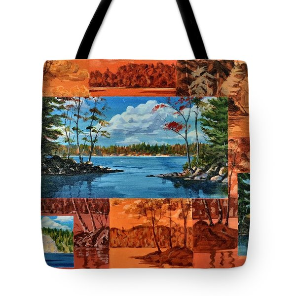 Mink Lake Looking North West Tote Bag