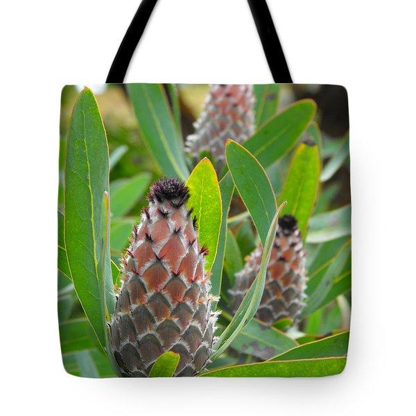 Mink Protea Flower Tote Bag
