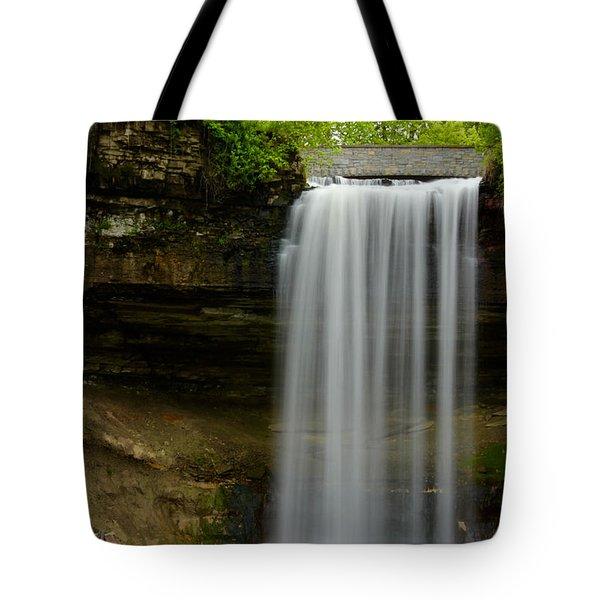Minnehaha Falls Tote Bag by Tiffany Erdman