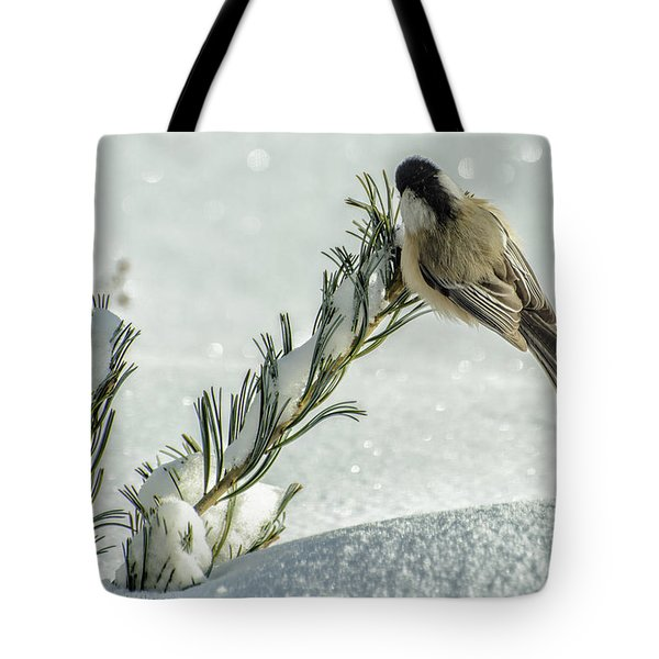 Minus Twenty Three Degree Morning.... Tote Bag