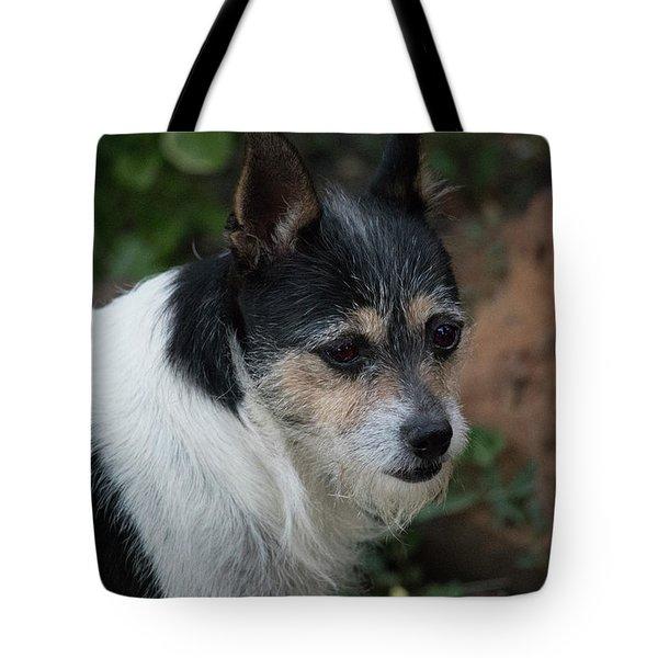 Minuture Foxie  Tote Bag