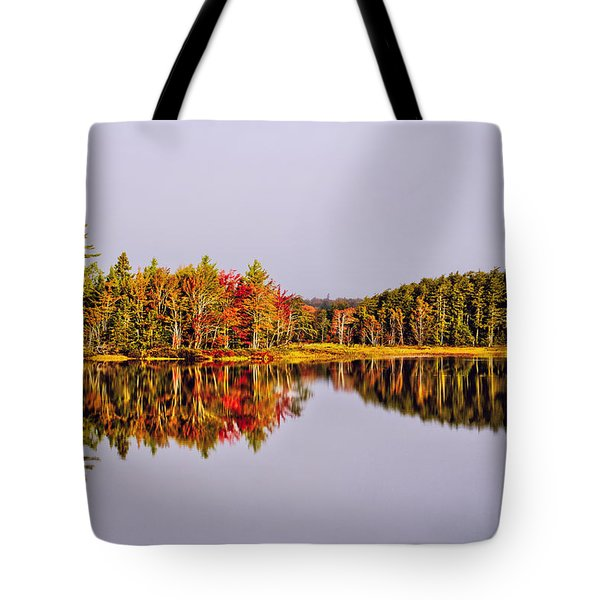 Mirror Of Beauty Tote Bag