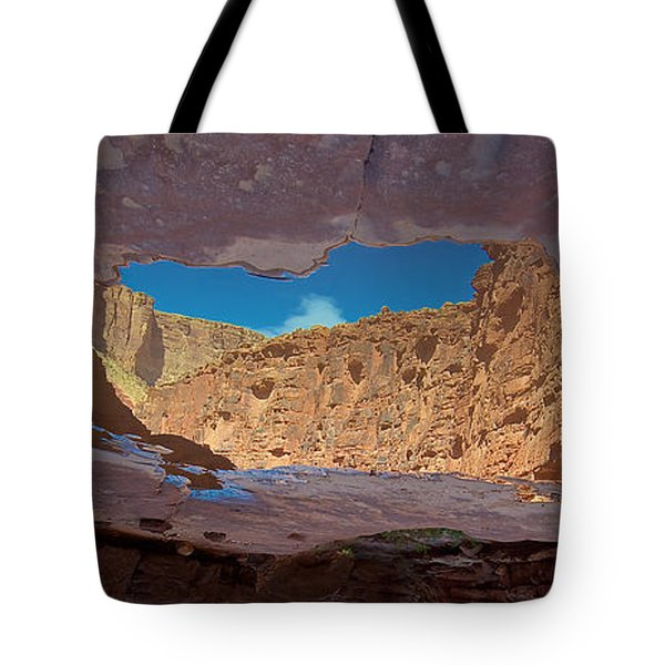 Mirror Pool Tote Bag by Britt Runyon