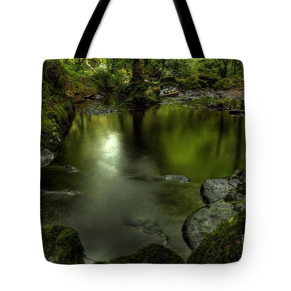 Mirror Pool Tote Bag
