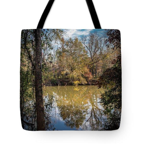 Mirror River Tote Bag
