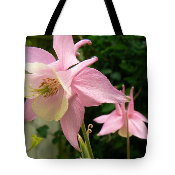 Mirrored Image Tote Bag by Pamela Patch