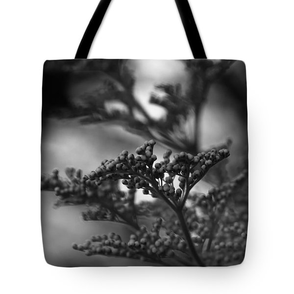 Mirrored In Sterling Tote Bag by Linda Shafer