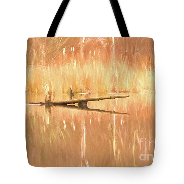 Mirrored Reflection Tote Bag by Laurinda Bowling