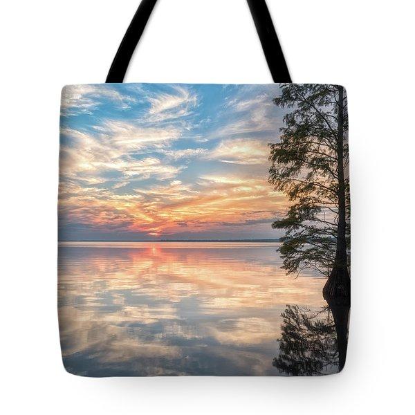 Mirrored Tote Bag