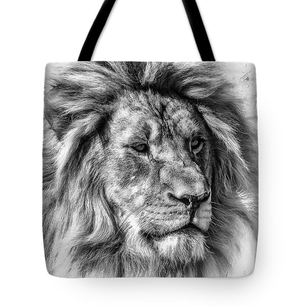 Tote Bag featuring the photograph Mischievous  by Elaine Malott