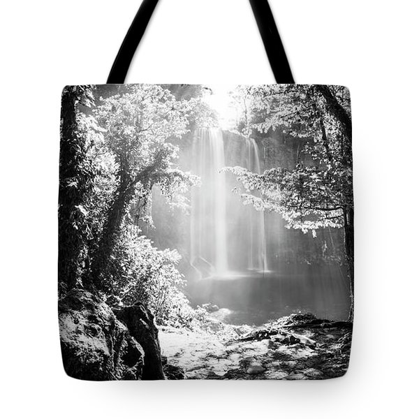 Tote Bag featuring the photograph Misol Ha Waterfall Mexico Black And White by Tim Hester