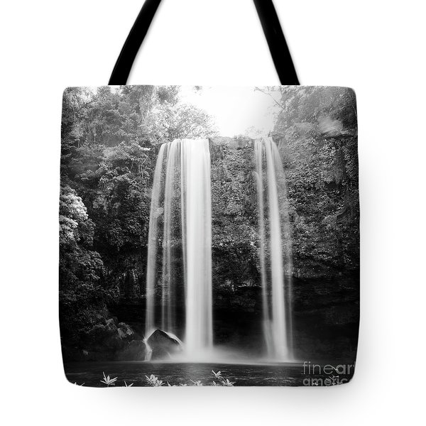 Tote Bag featuring the photograph Misol Ha Waterfall Palenque Black And White by Tim Hester