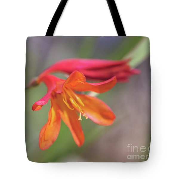 Tote Bag featuring the photograph Misplaced Beauty by Linda Lees