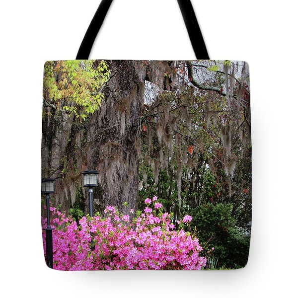 Mississippi Charm Tote Bag
