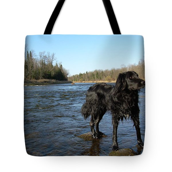 Tote Bag featuring the photograph Mississippi River Dog On The Rocks by Kent Lorentzen