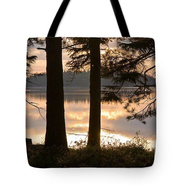 Misty Bay Tote Bag
