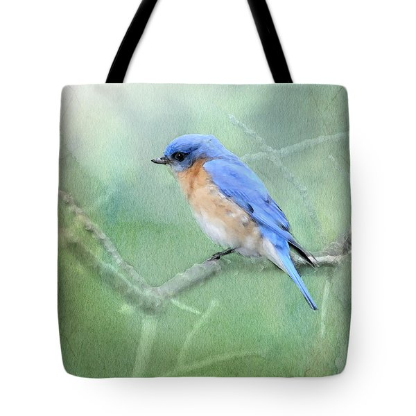 Tote Bag featuring the photograph Misty Blue by Betty LaRue