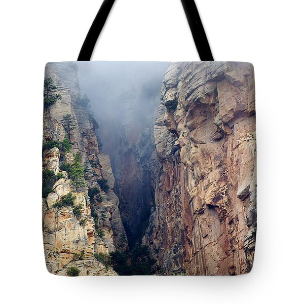 Tote Bag featuring the photograph Misty Canyons by Phyllis Denton