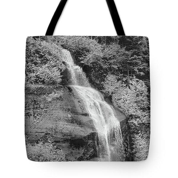 Misty Fjord Falls Tote Bag