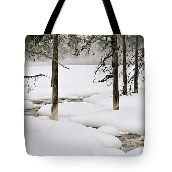 Tote Bag featuring the photograph Misty Morn by Susan Rissi Tregoning
