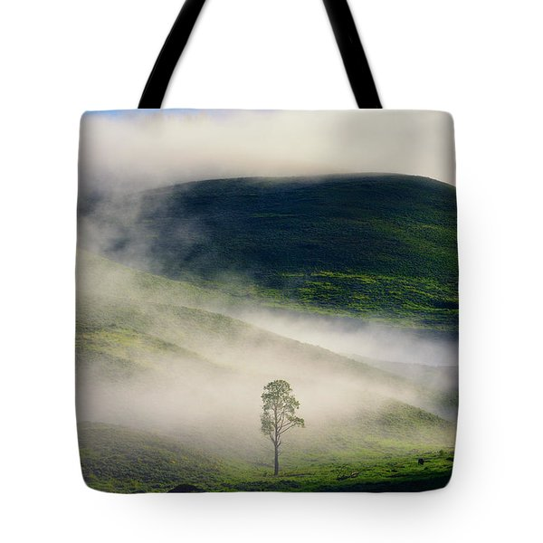 Tote Bag featuring the photograph Misty Morning by Greg Norrell