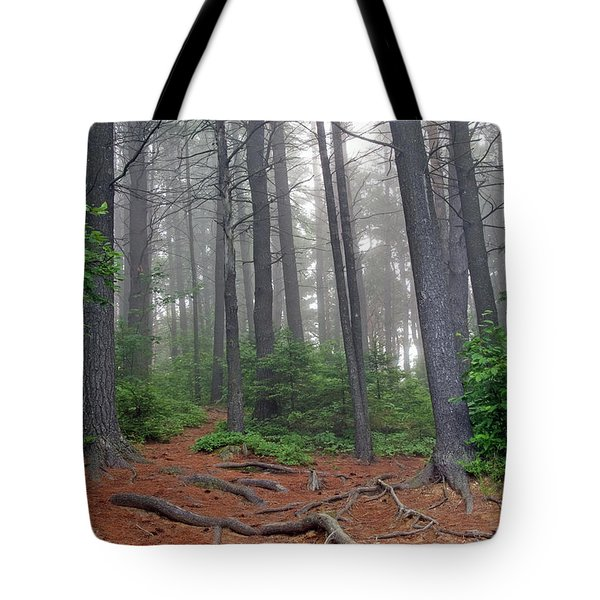 Misty Morning In An Algonquin Forest Tote Bag