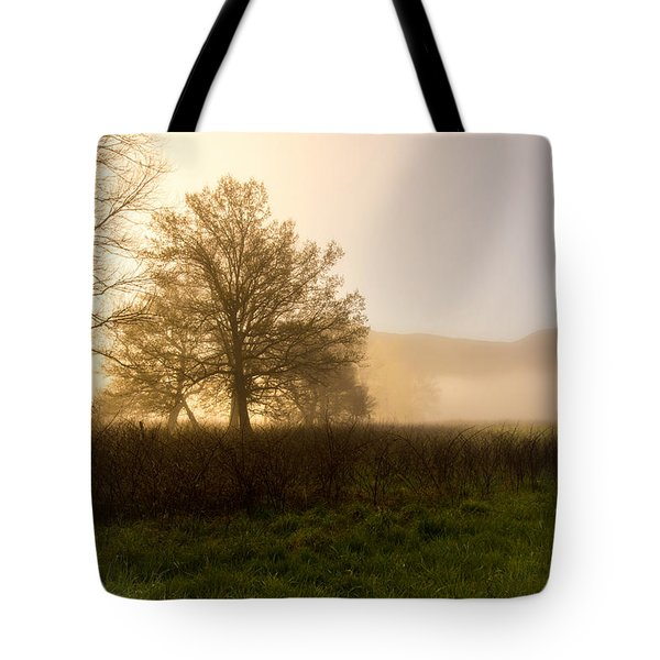 Tote Bag featuring the photograph Misty Morning by Rebecca Hiatt