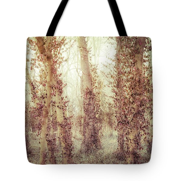 Misty Morning Winter Forest  Tote Bag