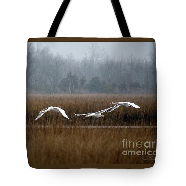 Misty Mute Swans Soaring South Jersey Wetlands Tote Bag by Diana Wind