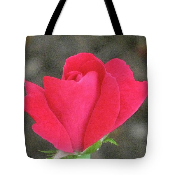 Misty Red Rose Tote Bag by Michele Wilson