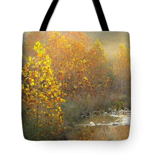 Misty Sunrise At Lost Maples State Park Tote Bag