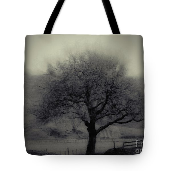 Misty Tree Tote Bag by Karen Lewis