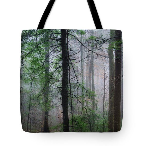 Tote Bag featuring the photograph Misty Winter Forest by Thomas R Fletcher
