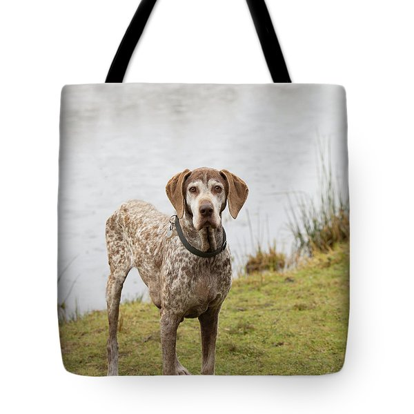 Mitch 2 Tote Bag