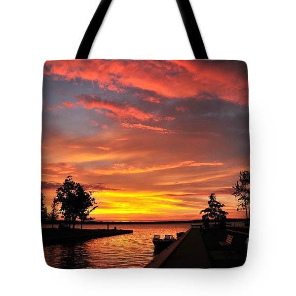Mitchell State Park Cadillac Michigan Tote Bag by Terri Gostola