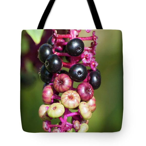 Tote Bag featuring the photograph Mixed Berries On Branch by Michael D Miller