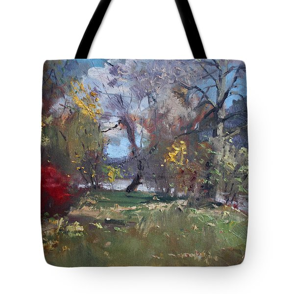 Mixed Weather In A Fall Afternoon Tote Bag