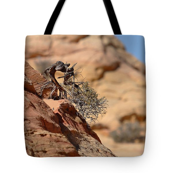 Tote Bag featuring the photograph Miyagi by David Andersen